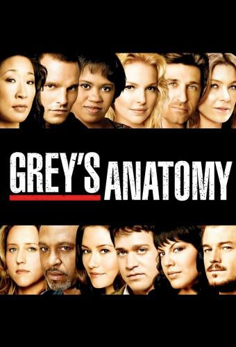 Grey's Anatomy (season 17)